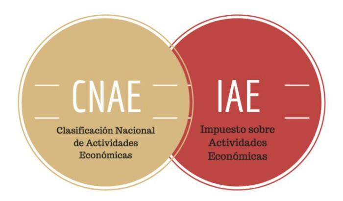 CNAE IAE
